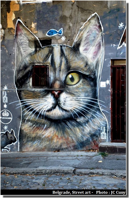 belgrade street art chat