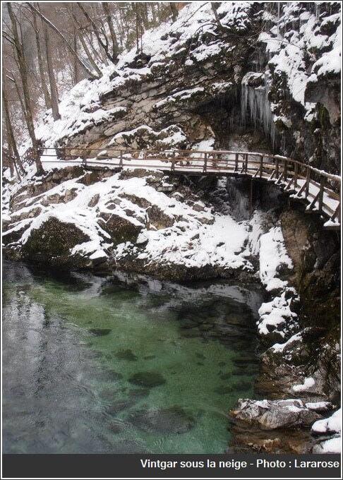 Gorges Vintgar sous la neige