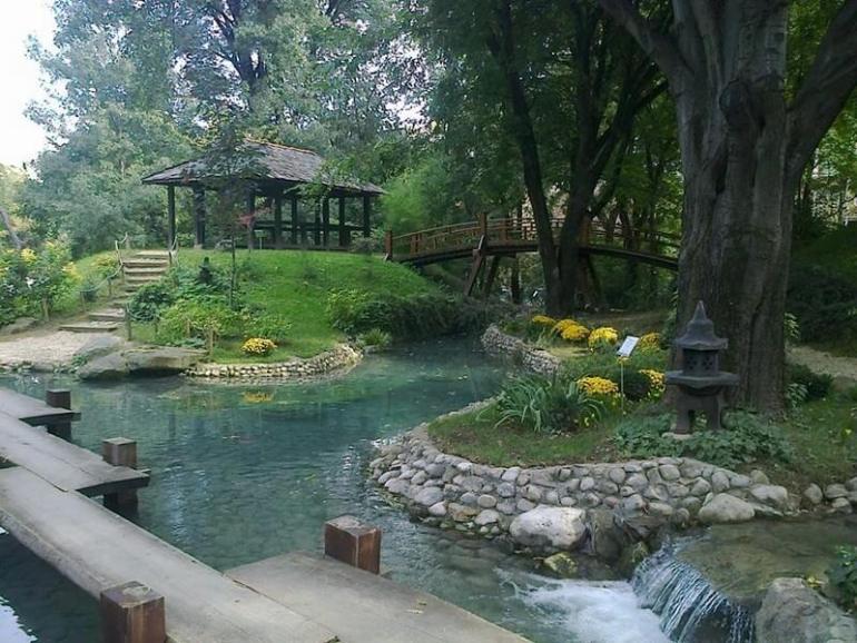 Belgrade jardin botanique jevremovac