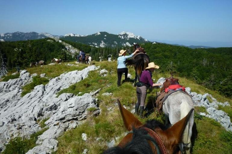 Découvrir le Velebit à cheval avec les Lippizans