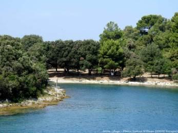 Plage en Istrie à l'abri des pinèdes