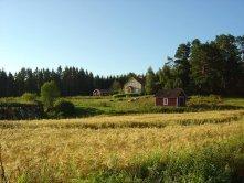 Paysage rustique dans le sud de la Finlande