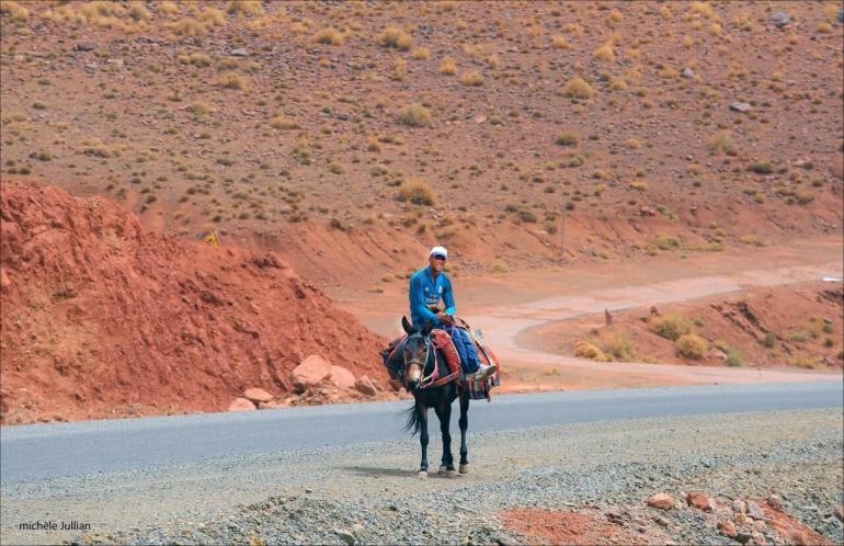 Route vers ouarzazate un homme sur son âne