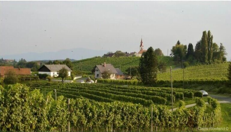 Visiter la Slovénie - Lieux incontournables et visites recommandées 9