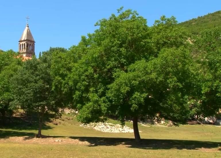 clocher du monastère krka depuis les prés environnants