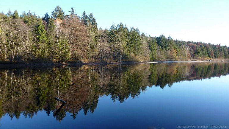 forêts bordant une partie du lac ammersee un des lacs de la région de munich