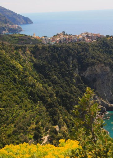 Cinque Terre, la Riviera Ligure du Levant (Voyage Italie) 27
