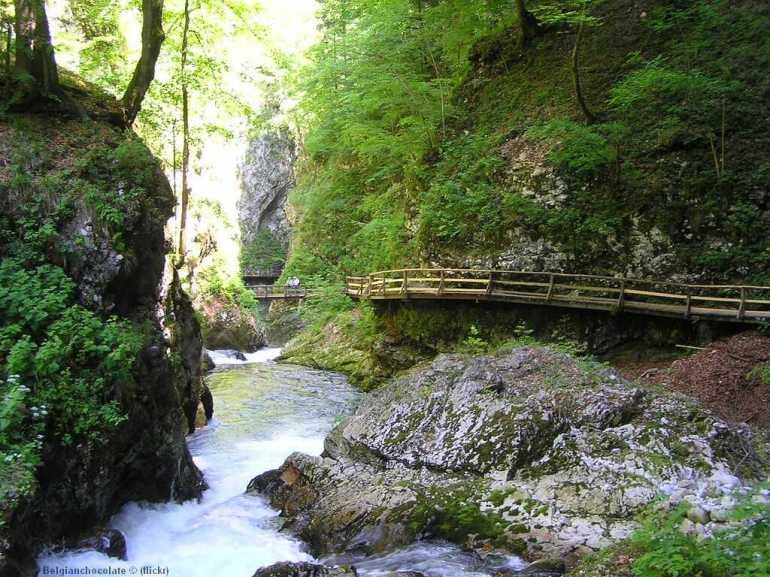gorges de vintgar en slovénie centrale