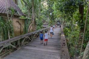 Ubud - passerelle Camvuham