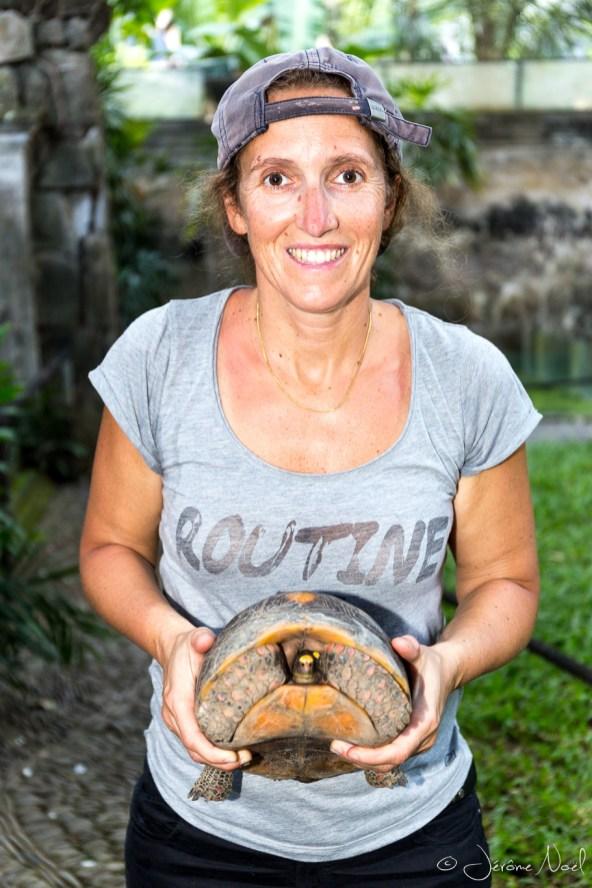 Bali Reptile Park - Maman tortue