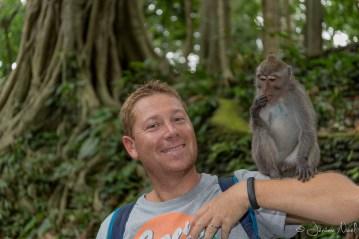 Monkey Forest - Papa
