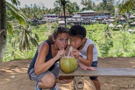 Pujung - noix de coco