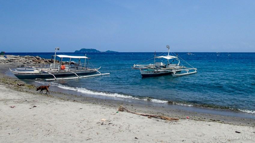 Malatapay - vue Apo Island