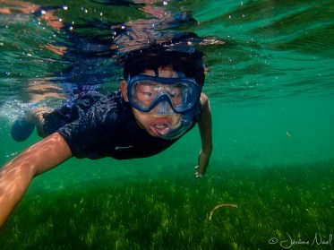 Siquijor - Tubod Marine Sanctuary - snorkeling