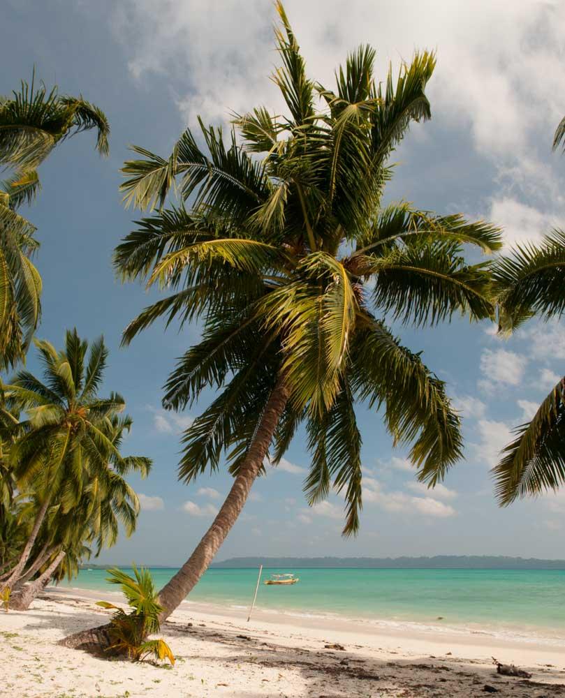 Plage Numéro 5, Ile Havelock, Iles Andaman, Inde