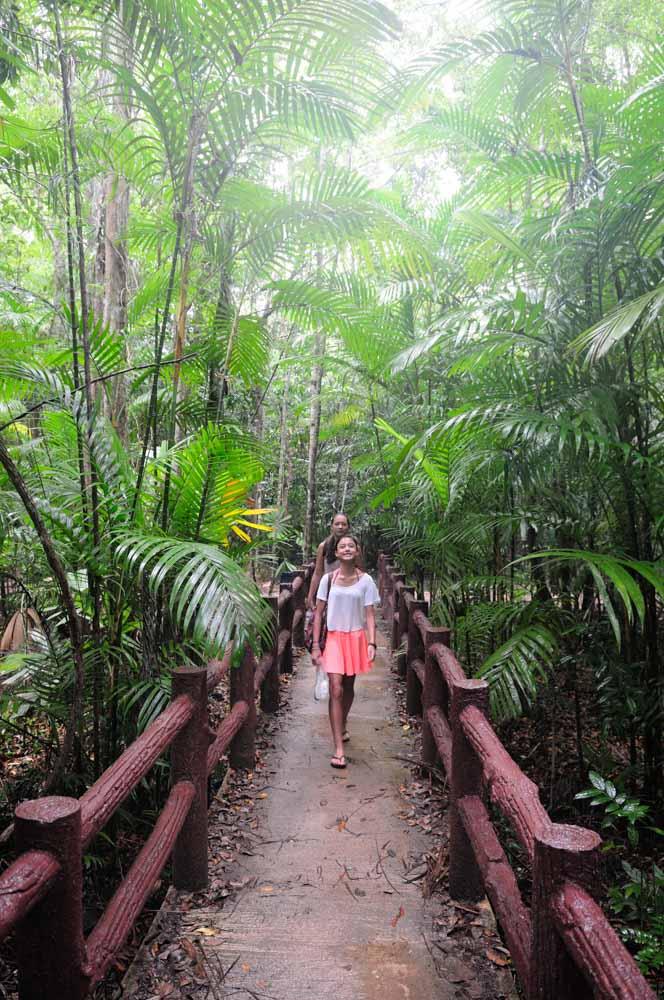 Emerald Pool, Tambon Khlong Thom Nuea, Krabi Province, Thailande