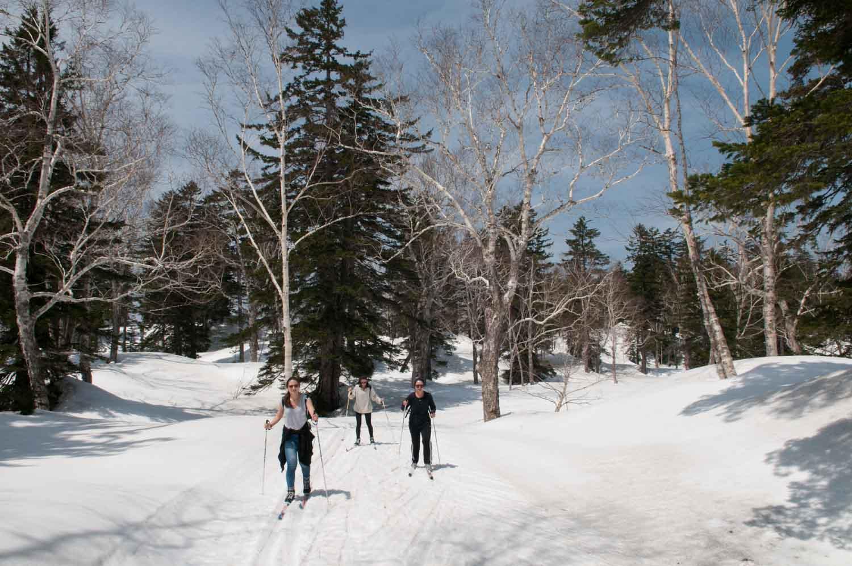 Ski de fond, Asahidake Onsen, Parc national Daisetsuzan, Hokkaido, Japon