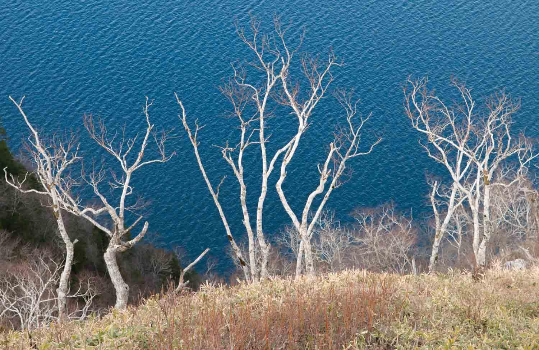 Lac Mashu-Ko, Parc national d'Akan, Hokkaido, Japon