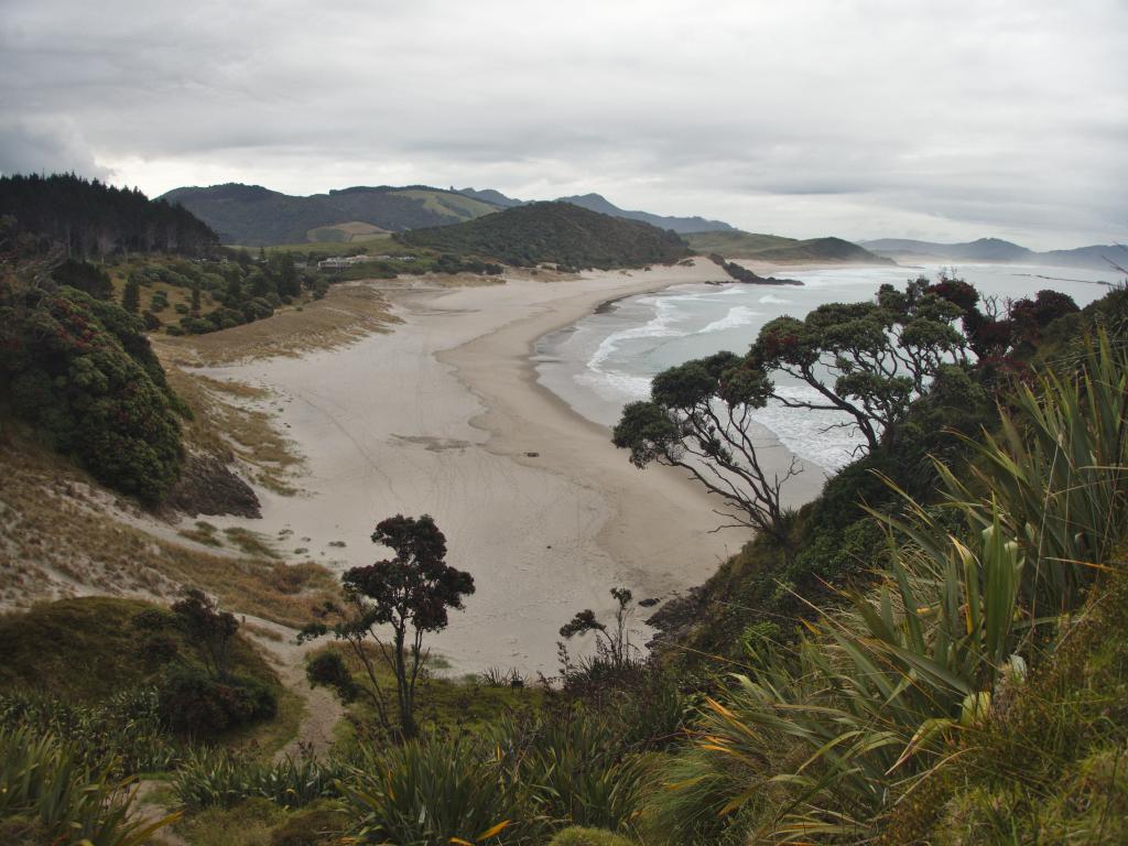 Nouvelle Zélande Whangarei Head