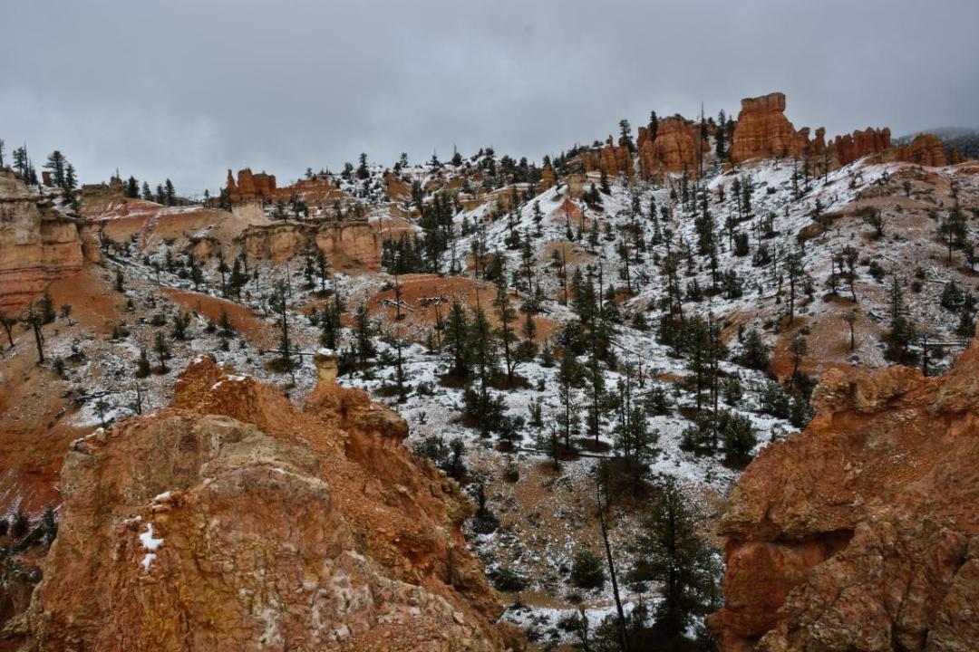 beauté du parc bryce canyon ouest américain