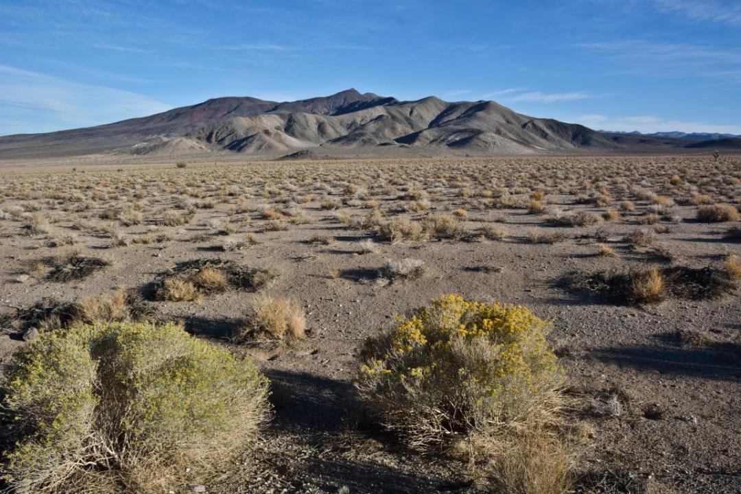 death valley ouest américain