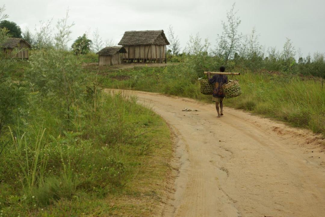 route sur l'île de Madagascar
