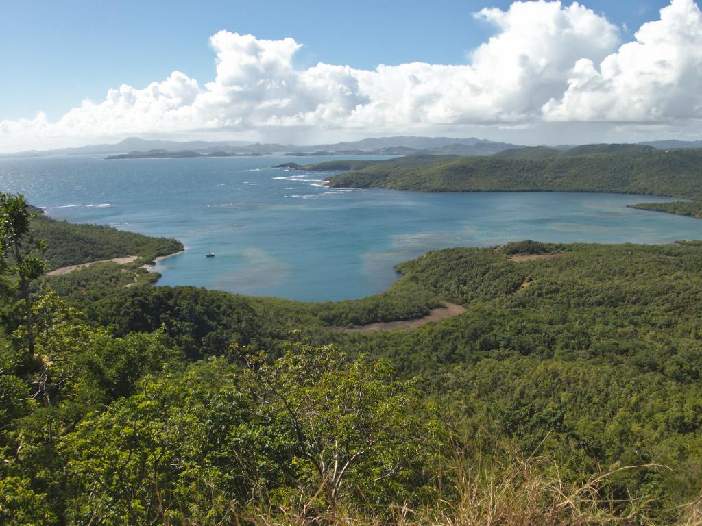 vue d'ensemble de la presqu'île de la caravelle en martinique dans les caraibes