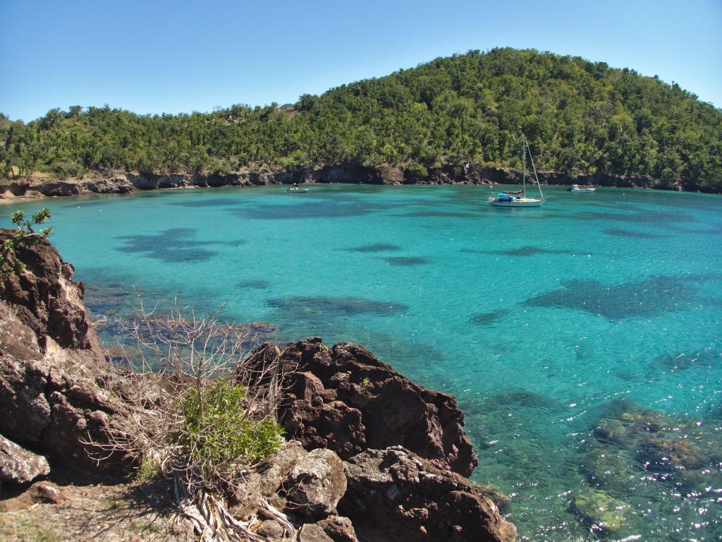 jolie crique sur l'île de Terre de Bas Guadeloupe Caraibes
