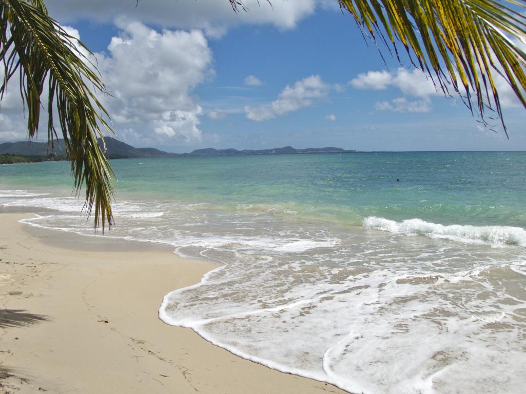 Littoral de Sainte Luce en Martinique dans les Caraibes