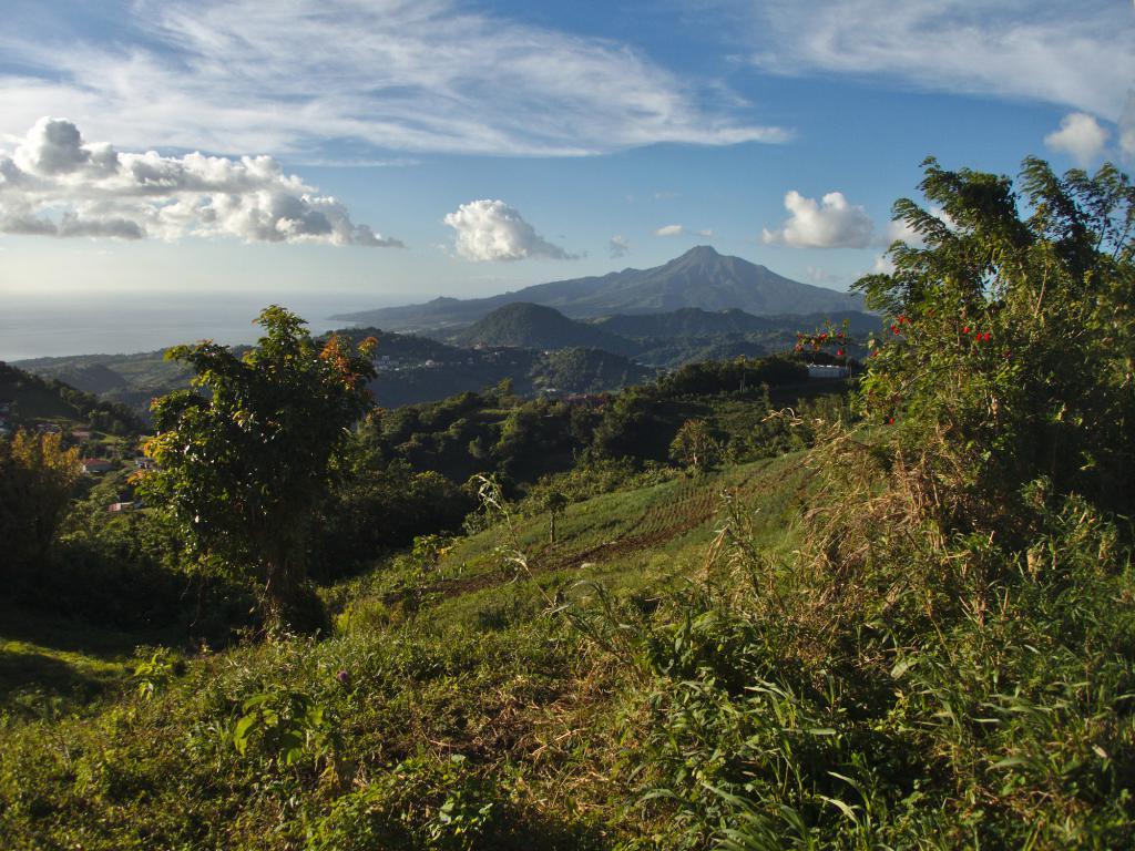 la montagne pelée, volcan de la martinique dans les caraibes