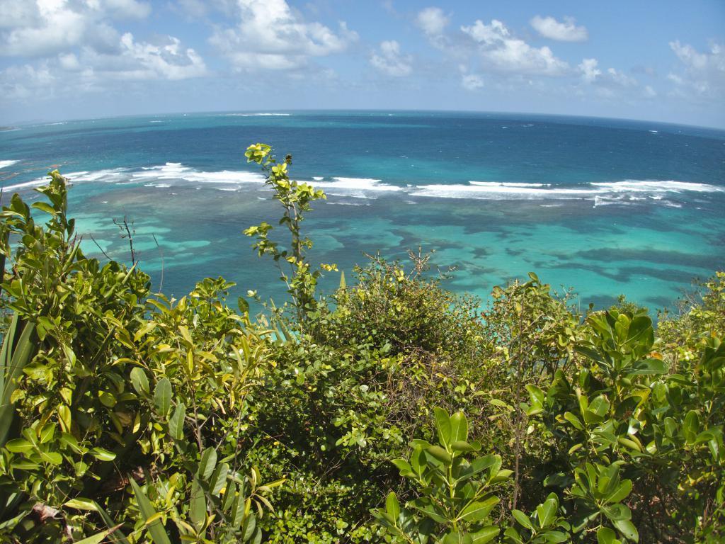 la côte Sud Atlantique de la Martinique dans les Caraïbes