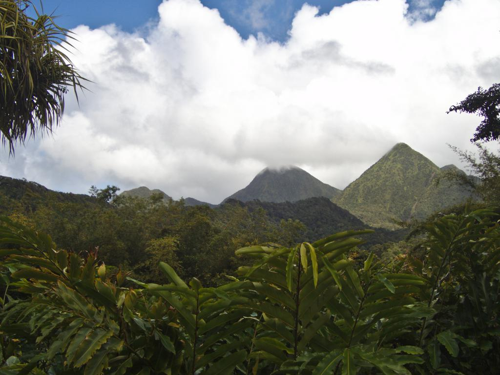 vue depuis le jardin de Balata en Martinique dans les Caraibes