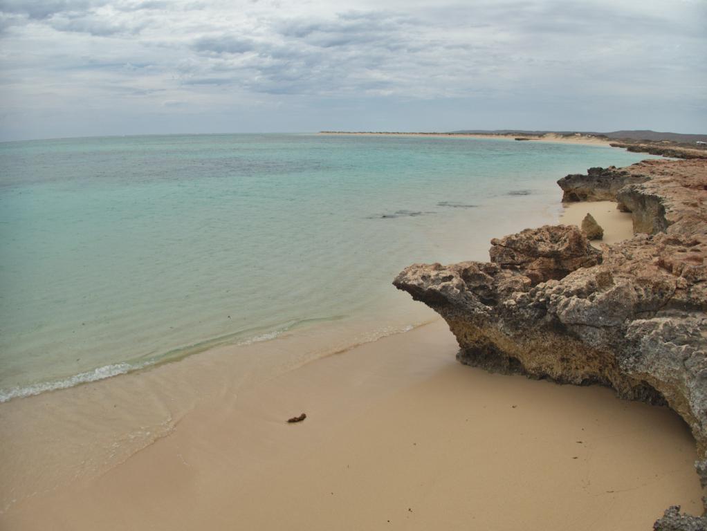 snorkeling depuis le cape range vers la barrière de corail