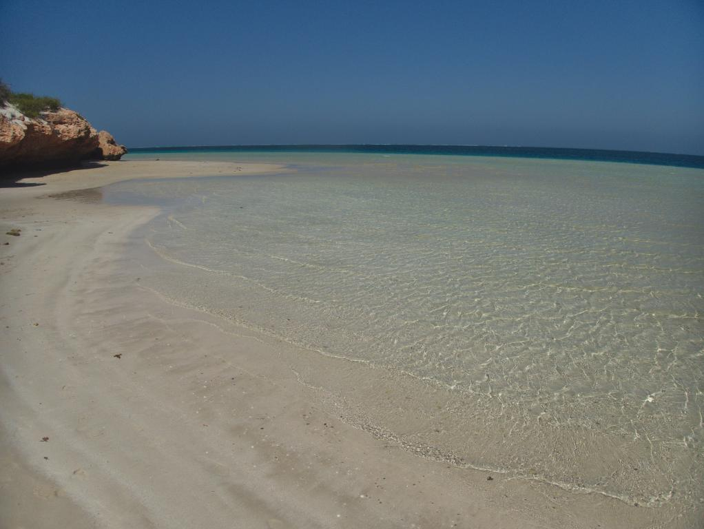 Coral Bay snorkeling près de la barrière de corail