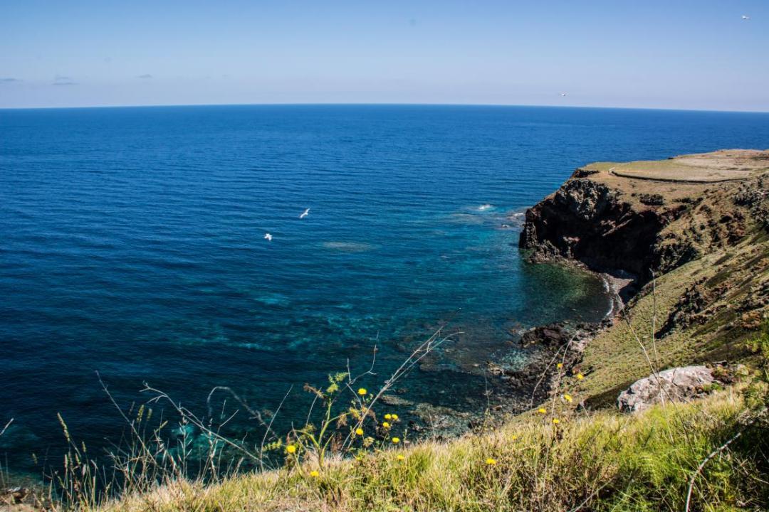ile italienne de ustica, paysage méditerranéen