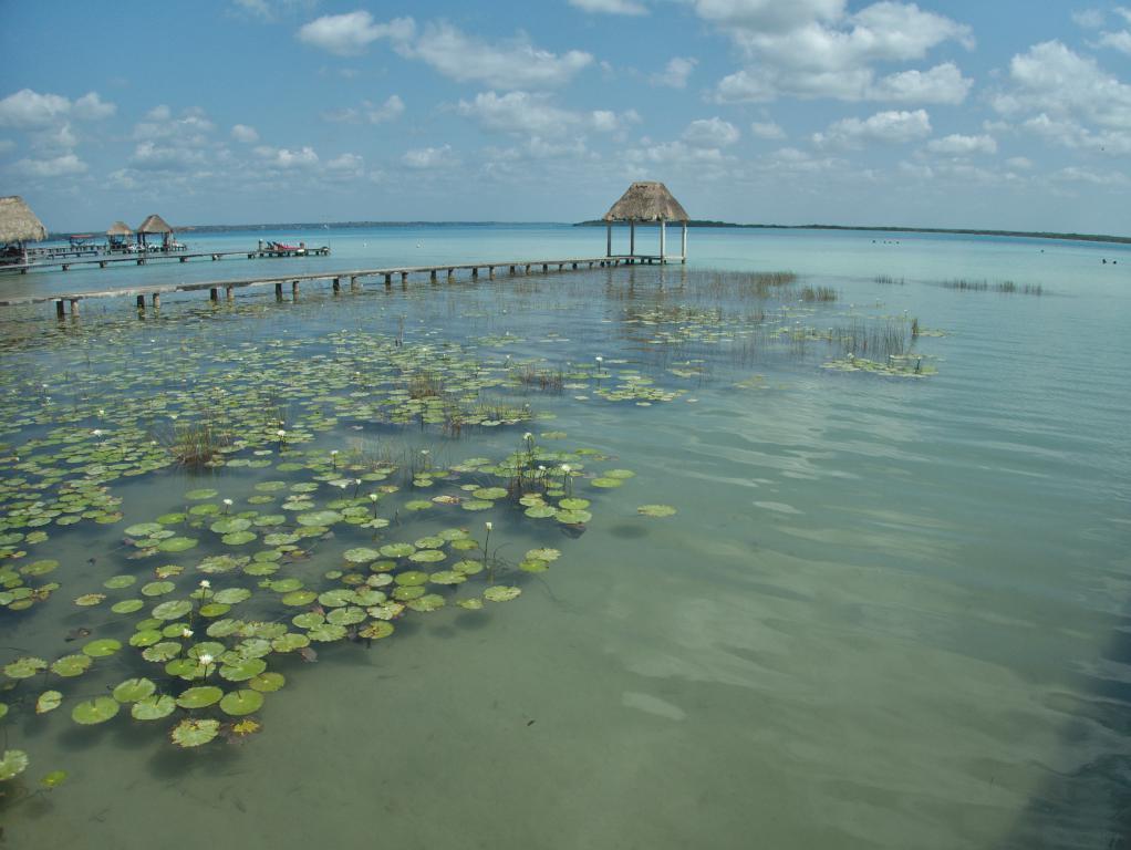 bleu du lac de bacalar sud peninsule yucatan