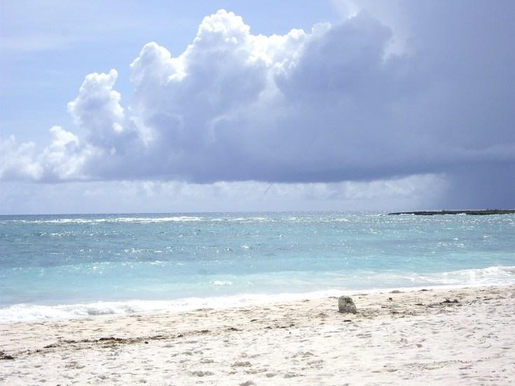beach-1218032_1280.jpg