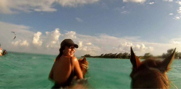 3-Swimming-horses