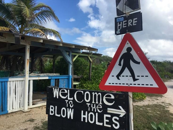 5-Blowholes-1