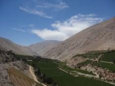 Vista habitual del valle de Elqui