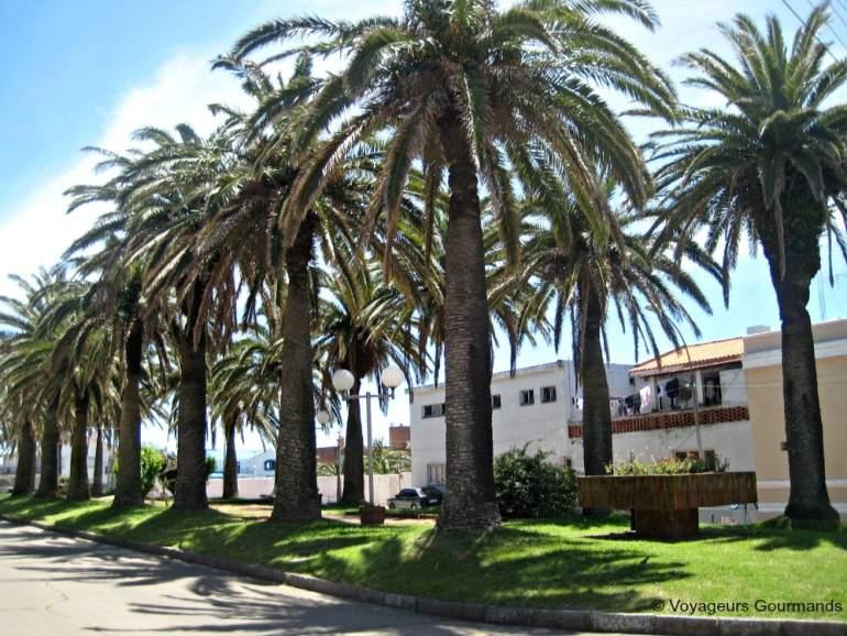 Punta del Este (5)