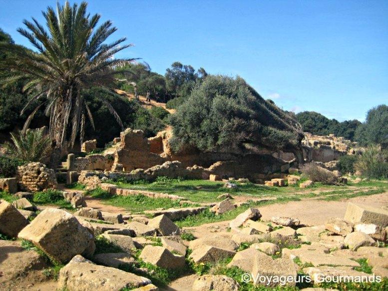 ruines de tipaza