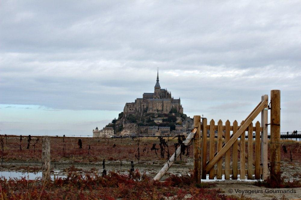 mont-saint-michel-28