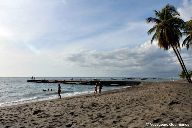 Plage de Martinique (23)