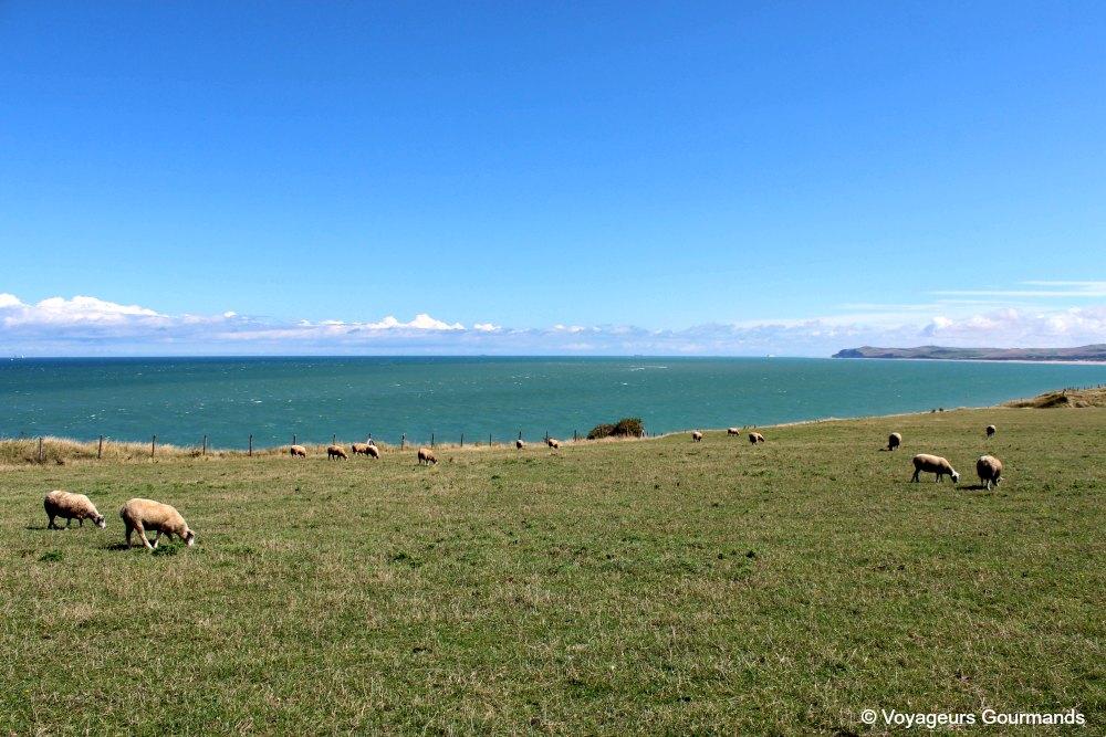 weekend sur la côte d'opale