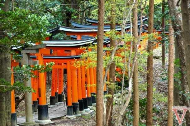 Fushimi Inari Kyoto-5