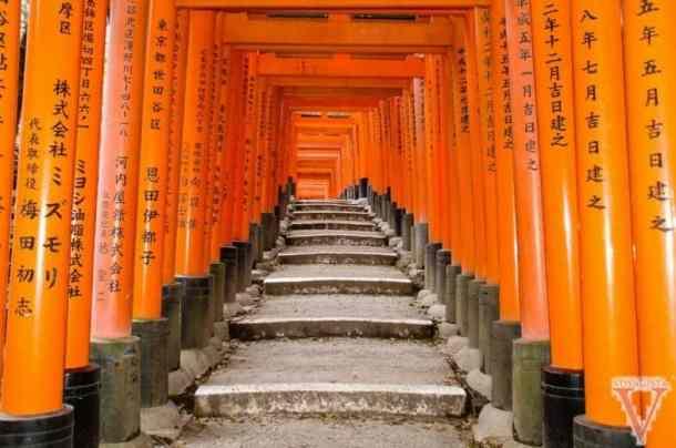 Fushimi Inari Kyoto-7