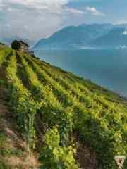Suisse2013-38