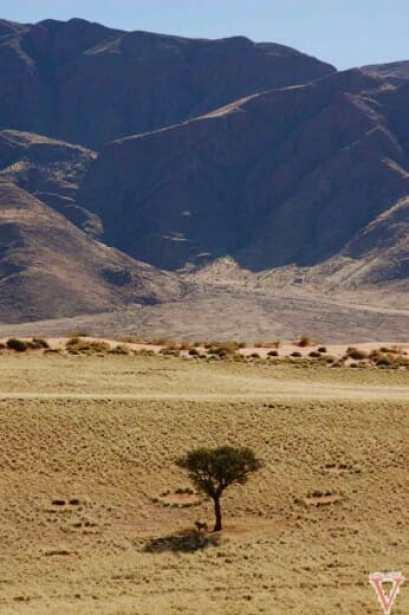 Le mystère des cercles de fées en Afrique