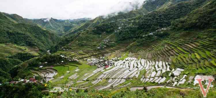 batang aux philippines